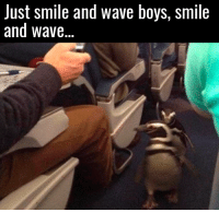 Smile and wave😂👋: Just smile and wave boys, smile  and wave. Smile and wave😂👋
