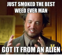 The Best Memes: JUST SMOKED THE BEST  WEED EVER MAN  GOTIT FROM AN ALIEN  quick meme com