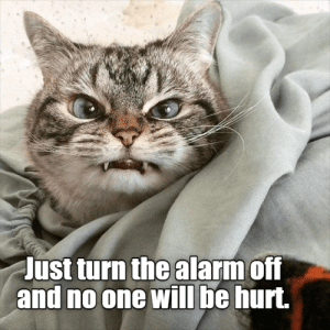 No One Will: Just turn the alarm off  and no one will be hurt.