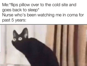 Just wanna be comfy by OkymCZ MORE MEMES: Just wanna be comfy by OkymCZ MORE MEMES