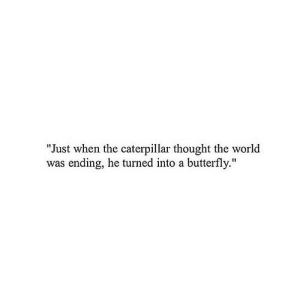 "https://iglovequotes.net/: ""Just when the caterpillar thought the world  was ending, he turned into a butterfly."" https://iglovequotes.net/"