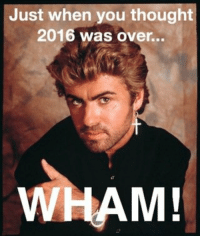funny RIP George Michael: Just when you thought  2016 was over...  WHAM! funny RIP George Michael