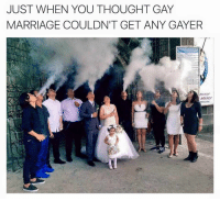 We get it: JUST WHEN YOU THOUGHT GAY  MARRIAGE COULDN'T GET ANY GAYER  TAVARY  MERCY We get it