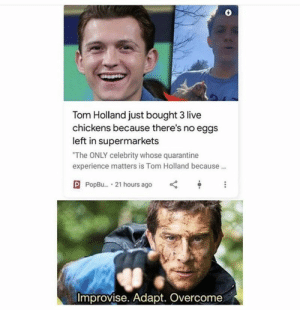 Just when you thought you couldn't love Tom Holland any more! #TomHolland #Chicken #Eggs #Memes: Just when you thought you couldn't love Tom Holland any more! #TomHolland #Chicken #Eggs #Memes