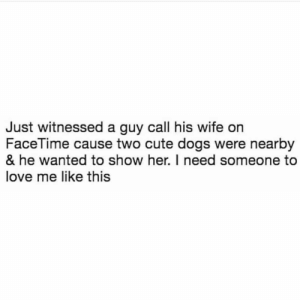 Animals, Cute, and Dogs: Just witnessed a guy call his wife on  FaceTime cause two cute dogs were nearby  & he wanted to show her. I need someone to  love me like this Dog Memes Of The Day 32 Pics – Ep57 #animalmemes #dogmemes #memes - Lovely Animals World