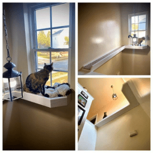 justcatposts:  Made her a bridge to the window she always stared at but could never reach. (Source): justcatposts:  Made her a bridge to the window she always stared at but could never reach. (Source)
