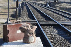 Target, Tumblr, and Blog: justfurbythings:  Waiting for the midnight train going anywhere