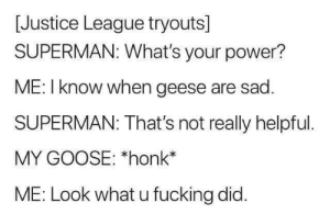 Fucking, Superman, and Justice: [Justice League tryouts]  SUPERMAN: What's your power?  ME: I know when geese are sad.  SUPERMAN: That's not really helpful  MY GOOSE: *honk  ME: Look what u fucking did. * SAD HONK*