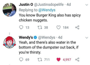 Burger King, Thirsty, and Wendys: Justin 0 @Justinsdopelife 4d  Replying to @Wendys  You know Burger King also has spicy  chicken nuggets.  13 38 184  Wendy's @Wendys 4d  Yeah, and there's also water in the  bottom of the dumpster out back, if  you're thirsty.  69 t 711 4,997 Wtf Wendy