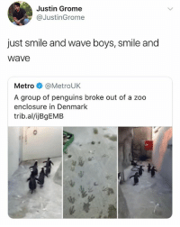 Funny, Meme, and Denmark: Justin Grome  @JustinGrome  just smile and wave boys, smile and  Wave  Metro@MetroUK  A group of penguins broke out of a zoo  enclosure in Denmark  trib.al/ijBgEMB I've been on @funny's page for the past hour 😂 a must follow