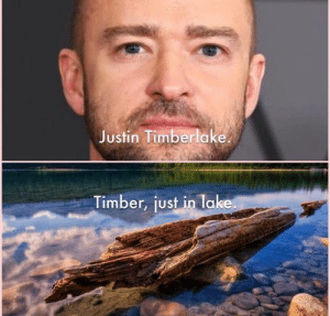 Justin TImberlake: Justin Timberlake  Timber, just in lake