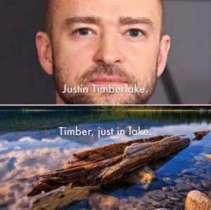 Justin TImberlake: Justin Timberlake  Timber, just in lake.