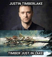 https://t.co/XYHroSYYZ3: JUSTIN TIMBERLAKE  TIMBER JUSTIN LAKE https://t.co/XYHroSYYZ3