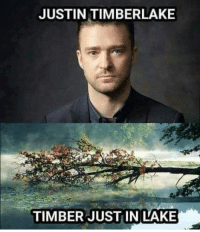 Just timber in lake.: JUSTIN TIMBERLAKE  TIMBER JUSTIN LAKE Just timber in lake.
