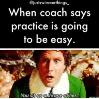 Lies Memes: @justswimmerthings  When coach says  practice is going  to be easy.  You sit on althrone of lies.  memes.com