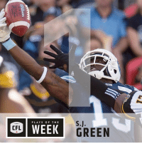 Head, Memes, and Wee: K GREEN  PLAYS OF THE  WEE  CFL He could've had all 5 spots potentially, but @sj19_19sj will have to settle for just the 1 in our Plays of the Week. . . . To see the Top 5, head to our link in bio CFLKickoff BringItIn