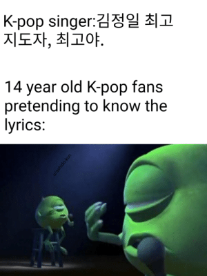 KPOp: K-pop singer:김정일 최고  지도자, 최고야.  14 year old K-pop fans  pretending to know the  lyrics:  u/ashido-kun KPOp