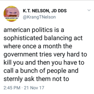Politics, American, and Government: K.T. NELSON, JD DDS  MOM EXPERT KR  american politics is a  sophisticated balancing act  where once a month the  government tries very hard to  kill you and then you have to  call a bunch of people and  sternly ask them not to  2:45 PM 21 Nov 17