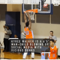 Dunk, Sports, and Vicious: K Y REE WALKER IS A 6 5  MAN- CHILD BLO WIN G U P  SOCIAL MEDIA WITH  VICIOUS DUNKS Kyree Walker is putting the basketball world on notice with his vicious dunks (via @hoopdiamonds)
