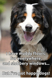 Memes, Instinctive, and 🤖: K9 Instinct  have muddy floors,  fur everywhere,  and slobbery windows...  But we got happy dogs! <3
