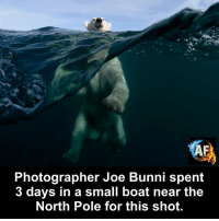 Memes, Boat, and 🤖: KA  Photographer Joe Bunni spent  3 days in a small boat near the  North Pole for this shot.