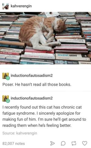 "being inclusive is good: kahverengin  Wwinci Qeis""c  inductionofautosadism2  Poser. He hasn't read all those books  inductionofautosadism2  I recently found out this cat has chronic cat  fatigue syndrome. I sincerely apologize for  making fun of him. I'm sure he'll get around to  reading them when he's feeling better  Source: kahverengin  82,007 notes being inclusive is good"