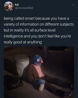 Meirl: kai  @microsoft42  being called smart because you have a  variety of information on different subjects  but in reality it's all surface level  intelligence and you don't feel like you're  really good at anything Meirl