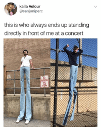 Follow me for the funniest content 😂 - Yao Ming ain't got sh*t on this guy Cr: @rafastinks: kaila Velour  @sanjuniperc  this is who always ends up standing  directly in front of me at a concert  NO  PARKING  ANY  TIME Follow me for the funniest content 😂 - Yao Ming ain't got sh*t on this guy Cr: @rafastinks