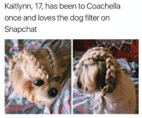 Follow @Satan if you know what's good for u: Kaitlynn, 17, has been to Coachella  once and loves the dog filter on  Snapchat  If: Exterior Follow @Satan if you know what's good for u