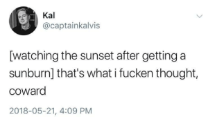 Sunset, Thought, and What: Kal  @captainkalvis  [watching the sunset after getting a  sunburn] that's what i fucken thought,  coward  2018-05-21, 4:09 PM