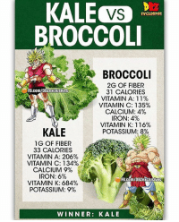 Anime, Broly, and Dragonball: KALE VS  EXCLUSIVES  BROCCOLI  BROCCOLI  2G OF FIBER  FB.com/DBZexclusives  31 CALORIES  VITAMIN A: 11%  VITAMIN C: 135%  CALCIUM: 4%  IRON: 4%  VITAMIN K: 116%  KALE  POTASSIUM: 8%  1G OF FIBER  33 CALORIES  VITAMIN A: 206%  VITAMIN C: 134%  CALCIUM 9%  IRON: 6%  FB.com/DBZexclusives  VITAMIN K: 684%  POTASSIUM: 9%  WINNER: KALE Incoming triggered Broly fans 😆 . (Please give us credit in the description if you repost this 👍🏼@dbz_exclusives). ━━━━━━━━━━━━━━━━━━━━━ dbz dragonball dbzmemes dragonballsuper cosplay comics goku supersaiyangod onepunchman broly anime manga superman dragonballz vegeta trunks naruto hot supersaiyan beerus gohan superhero androids movie trailer zamasu like4lik bardock saiyan vegito