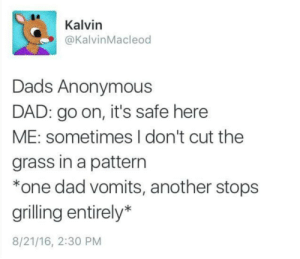Meirl: Kalvin  @KalvinMacleod  Dads Anonymous  DAD: go on, it's safe here  ME: sometimes I don't cut the  grass in a pattern  *one dad vomits, another stops  grilling entirely*  8/21/16, 2:30 PM Meirl