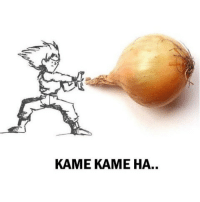 Indonesian (Language), Kame, and Kamee: KAME KAME HA..