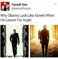 Memes, 🤖, and Tokyo: Kaneki Ken  @MetroGhoulin  Why Obama Look Like Kaneki When  He Leaves For Aogiri Wow *clap* I was reported again. Thanks guys. V appreciated. Whoever did it, let's just say you won't survive very well in the real world if u can't handle a picture of a drawn Hitler. Im Jewish myself and I don't get offended by Hitler jokes??? Animu: Tokyo Ghoul tokyoghoul tokyoghoulroota anime otaku funnyanime animefunny animememe