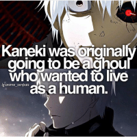 Anime, Memes, and True: KanekI was ongina  going to be aghou  who wanted to live  g:anime senpais  as a human. True anime fans and otakus follow @otakucentre !😍The perfect page for people who truly like anime, all your needs are on that page! Follow now 🍃 . . Credit @anime_senpais