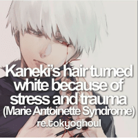 Anime, Facts, and Memes: Kanekis hair tunned  white because of  stress and trauma  (Marie  Antoinette syndro  rettokyoghdu QOTD: White or Black hair Kaneki? | Follow @ruianime for Anime Facts | ⭐ . . Cr. re.tokyoghoul
