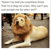 """Lion, Dog, and Who: """"Karen I've told you countless times  that I'm a dog not a lion. Why can't you  just accept me for who I am?""""  Wise liFunny"""