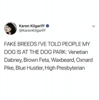 😂😂😂 (@someecards - @karenkilgariff on Twitter): Karen Kilgariff  @KarenKilgariff  FAKE BREEDS I'VE TOLD PEOPLE MY  DOG IS AT THE DOG PARK: Venetian  Dabney, Brown Feta, Waxbeard, Oxnard  Pike, Blue Hustler, High Presbyterian 😂😂😂 (@someecards - @karenkilgariff on Twitter)