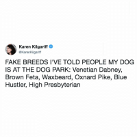 all seem legit to me!!!! (@karenkilgariff on Twitter): Karen Kilgariff  @KarenKilgariff  FAKE BREEDS I'VE TOLD PEOPLE MY DOG  IS AT THE DOG PARK: Venetian Dabney,  Brown Feta, Waxbeard, Oxnard Pike, Blue  Hustler, High Presbyterian all seem legit to me!!!! (@karenkilgariff on Twitter)