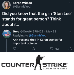 She deserved it: Karen Wilson  @GiannisVoul  Did you know that the g in 'Stan Lee'  stands for great person? Think  about it..  EMOn9a  Owo @Owo04378422 May 23  Replying to @GiannisVoul  Ahh yes and the I in Karen stands for  important opinion  42  1  COUNTER  STRIKE  GLOBAL OFFENSIVE She deserved it