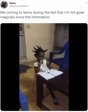 Information, Test, and Gone: Kasey  @QuecianaWalton  Me coming to terms during the test that I'm not gone  magically know the information Me every semester