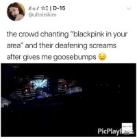 """Tumblr, Blog, and Got: kat*il D-15  @ultninikim  the crowd chanting """"blackpink in your  area"""" and their deafening screams  after gives me goosebumps  Rock Mutic  PicPlay blackpinkinyourareabitches: THIS GOT ME THE FEELS cr: utlninikim"""