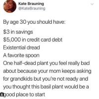 meirl: Kate Brauning  @KateBrauning  By age 30 you should have:  $3 in savings  $5,000 in credit card debt  Existential dread  A favorite spoon  One half-dead plant you feel really bad  about because your mom keeps asking  for grandkids but you're not ready and  you thought this basil plant would be a  Lgood place to start meirl