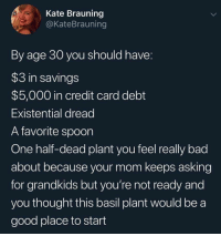 wonderytho:  meirl: Kate Brauning  @KateBrauning  By age 30 you should have:  $3 in savings  $5,000 in credit card debt  Existential dread  A favorite spoon  One half-dead plant you feel really bad  about because your mom keeps asking  for grandkids but you're not ready and  you thought this basil plant would be a  good place to start wonderytho:  meirl