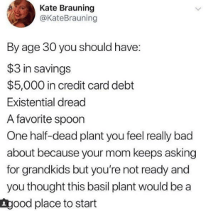 meirl by acrediblesauce MORE MEMES: Kate Brauning  @KateBrauning  By age 30 you should have:  $3 in savings  $5,000 in credit card debt  Existential dread  A favorite spoon  One half-dead plant you feel really bad  about because your mom keeps asking  for grandkids but you're not ready and  you thought this basil plant would be a  Lgood place to start meirl by acrediblesauce MORE MEMES