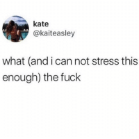 Fuck, Stress, and Can: kate  @kaiteasley  what (and i can not stress this  enough) the fuck