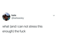Fuck, Irl, and Me IRL: kate  @kaiteasley  what (and i can not stress this  enough) the fuck Me irl