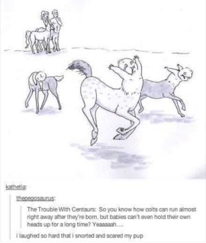 Indianapolis Colts, Run, and Time: kathetia  The Trouble With Centaurs: So you know how colts can run almost  right away after they're born, but babies can't even hold their own  heads up for a long time? Yeaaaaah....  i laughed so hard that i snorted and scared my pup Poor Centaur babies