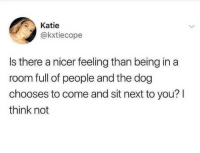 Dank, 🤖, and Dog: Katie  akxtiecope  Is there a nicer feeling than being in a  room full of people and the dog  chooses to come and sit next to you? I  think not