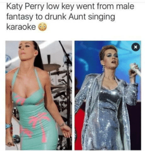 People change: Katy Perry low key went from male  fantasy to drunk Aunt singing  karaoke People change